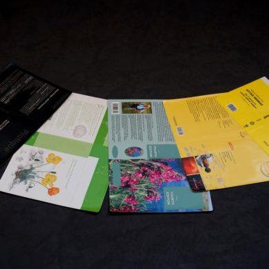 binding book covers